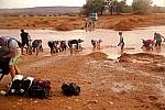 Zdjęcie na https://www.viapoland.com/ - portal informacyjny: Sahara jak kobieta%u2026
