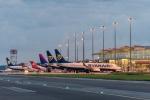 Zdjęcie na https://www.viapoland.com/ - portal informacyjny: Turystyczny styczeń na lotnisku we Wrocławiu